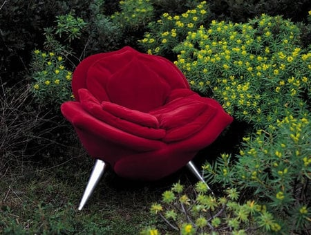 a rose chair for the lovers of sohphistication :  chair petals velvet masanori umeda