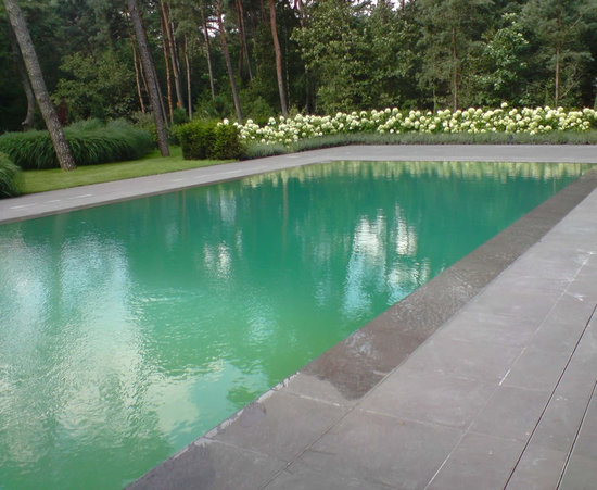 Mutandor 1 thumb 550x451 A terrace gives way to a pool with just a push of a button