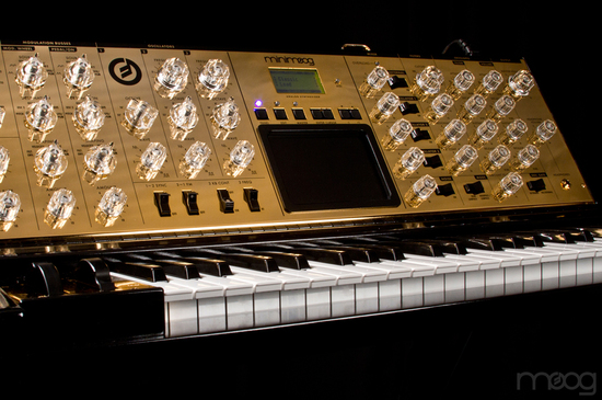 moog-music-gold-minimoog-6.jpg
