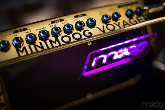 moog-music-gold-minimoog-7.jpg