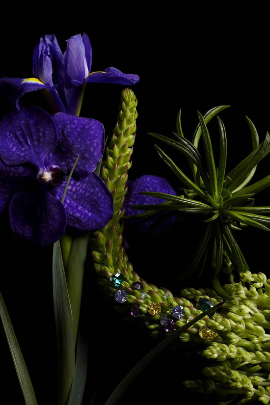 Botanical-masterpieces-with-Swarovski-Elements3.jpg