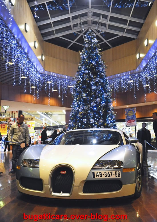 Bugatti-Veyron-inside-supermarket-in-France2.jpg