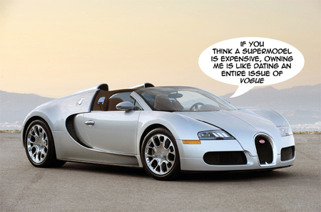Bugatti Veyron is both expensive to buy and maintain