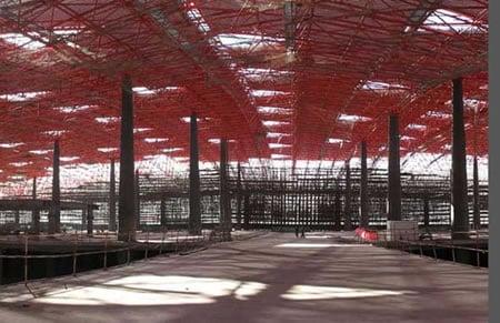 China_airport_2.jpg