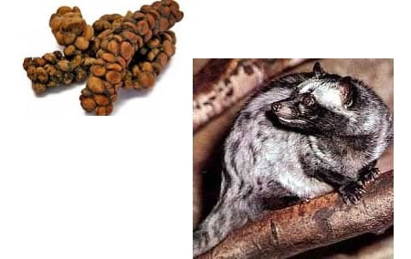 Expensive_5_Course_Kopi_Luwak_Coffee.jpg