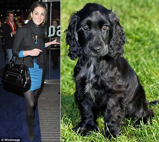 Kate Middleton's pet pooch gobbles up antique earrings gifted to her by Prince William