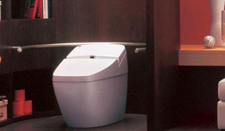 Luxury_toilet_2.jpg