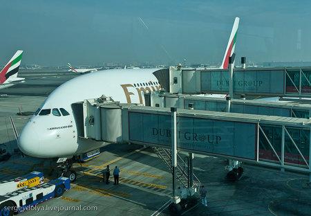 Magnificent_Flight3.jpg