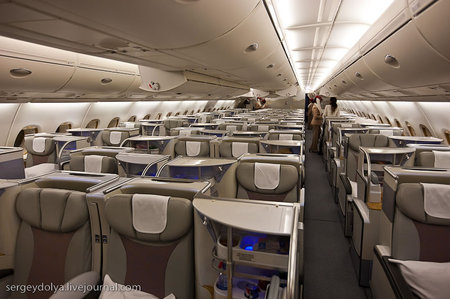 Magnificent_Flight4.jpg