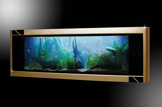 World's most expensive Aquarium for $4.8 million comes with a piece of real T REX bone