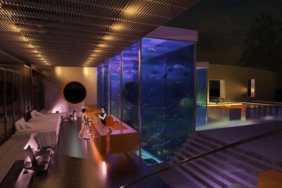 Okeanos_Aquascaping_swimmingpool_shark_aqaurium_3.jpg