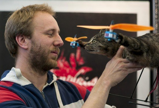 Orvillecopter-cat-helicopter-1.jpg