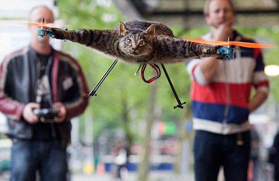 Orvillecopter-cat-helicopter-2.jpg