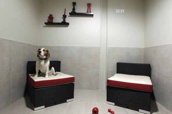 Parisian-luxury-hotel-4.jpg