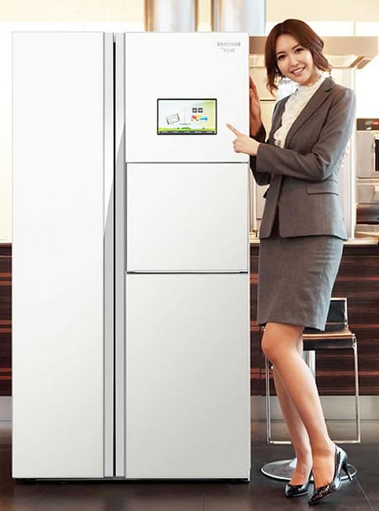Samsung-Zipel-e-diary-efrigerator-2.jpg