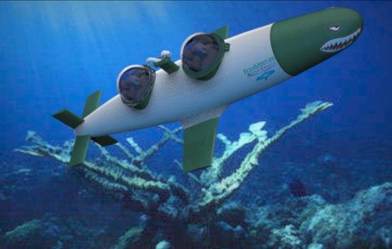 SeaBird-world's-fastest-personal-submarine-4.jpg