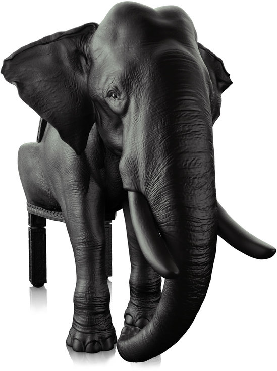 THE_ELEPHANT_CHAIR.jpg