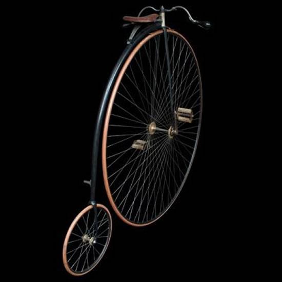 The-Royal-19th-century-bicycle-2.jpg