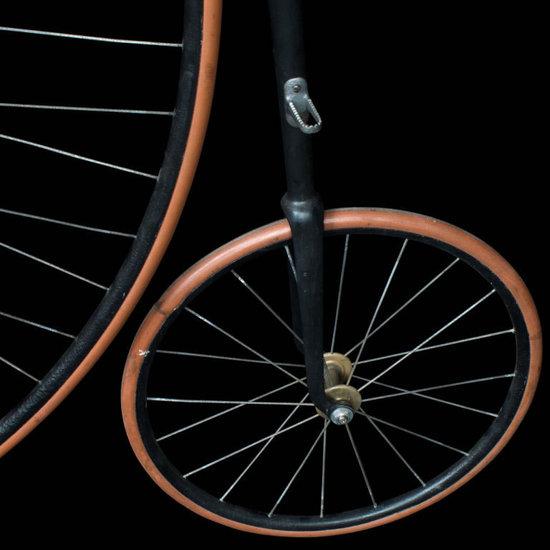 The-Royal-19th-century-bicycle-3.jpg