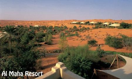 Top-3_luxurious_hotels_Al_Maha_Resort.jpg
