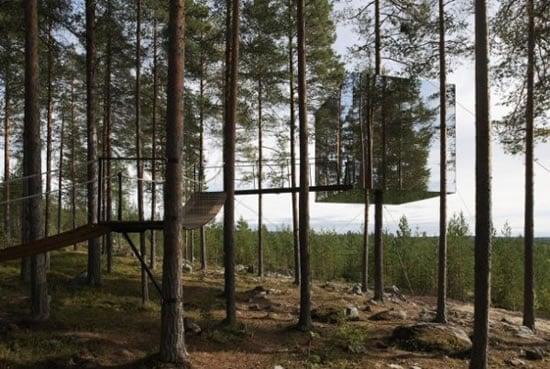 Treehotel2.jpg