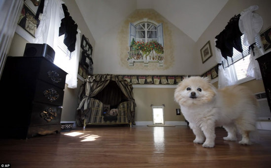 Victorian-doggie-mansion2.jpg
