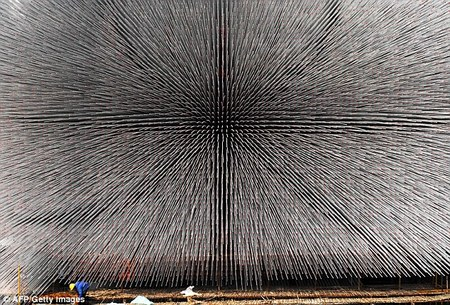 bizarre-building-2.jpg