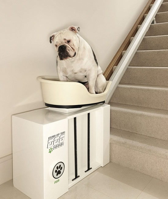dog-lift-2.jpg