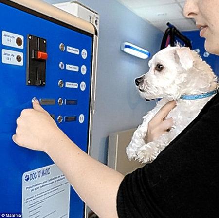 dog_washing_machine2.jpg