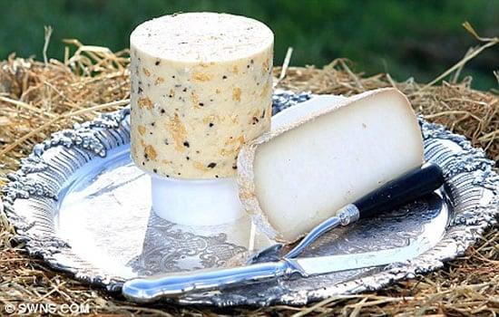 expensive-cheese-2.jpg