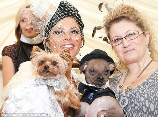 expensive-dog-wedding-2.jpg
