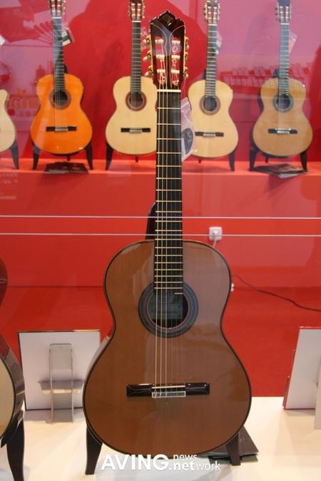 expensive_guitar_2.JPG