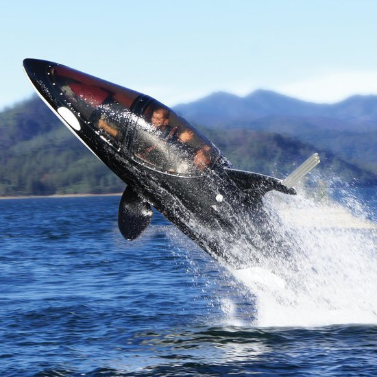 killer-whale-submarine1.jpg