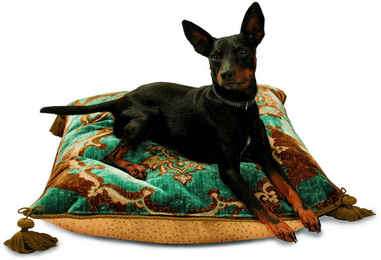 luxury-pillows-for-your-pet.jpg