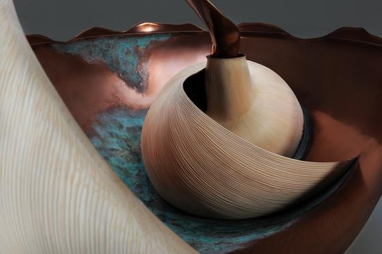 mollusque-3.jpg