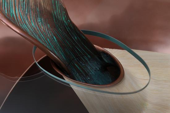 mollusque-8.jpg