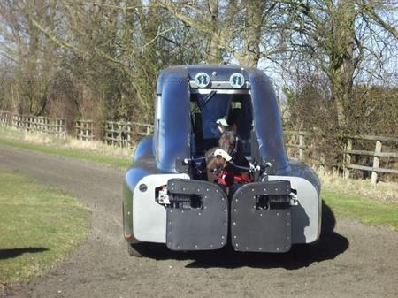 racehorse_training_2.jpg