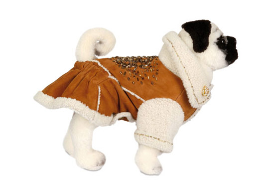 roberto_cavalli_pet_fashion.jpg