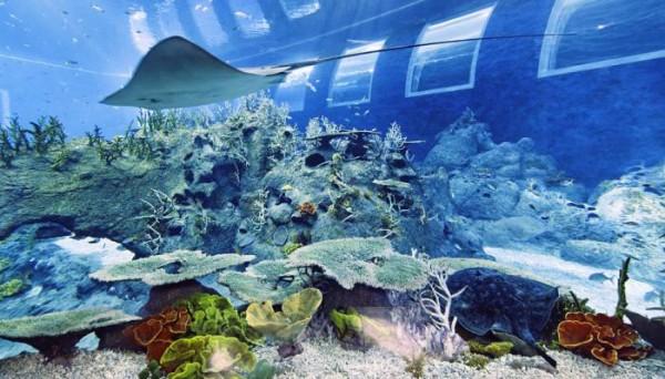 Resorts World Sentosa Singapore S Ocean Suites Allows You