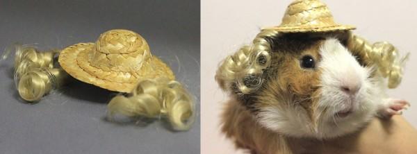 guinea-pig-costumes-2