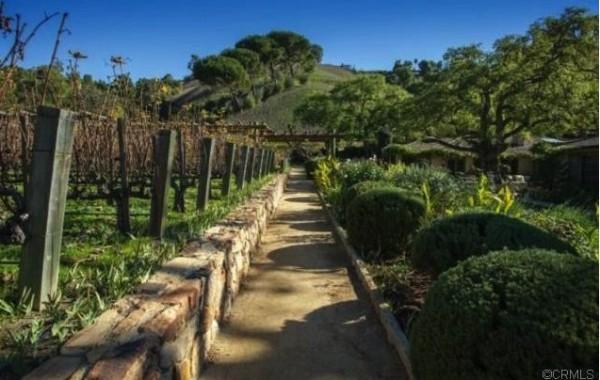 rupert-murdoch-vineyard-19